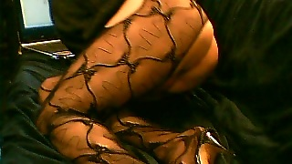Cd In Stockings Solo