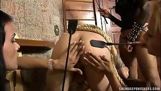 Shemales Fuck Submissive Male