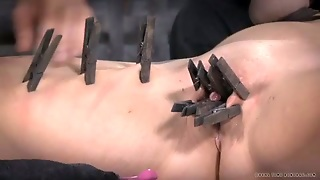 Clit, Slave Pain, Pussy Brunette, Shows Her Pussy, On Her Pussy, Vacuum Boobs, I Came In Her Pussy, Slave Nipples, Pussypain, In Her Pussy