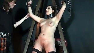 Girl In Collar And Bondage Wears Stockings