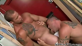 Muscle And Sex