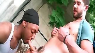 Gay Interracial Blowjob In Public