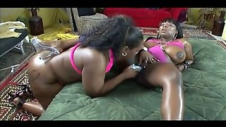 Oiled Big Breasted And Chubby Black Lesbians Tease Each Other's Cunts