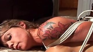 Mandy Hogtied