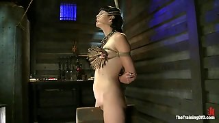 Bondage, Vibrator, Tied Up, Clothespins, Clamps On Nipples, Executors, Bdsm, Moaning, Chain Collar, Brunette Milf, Basement