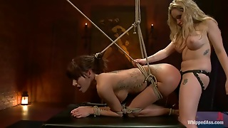 Sexy Hd, Bondage Hd, Wet Hd, Strapon Bondage, Bondage Pussy, Femdom Strapon Bdsm, Her Own Pussy, Strap On Femdom Bdsm, Pussysexy, Bondage Strap On