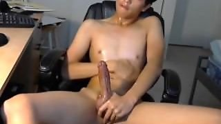 Korean Gay