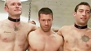 Orgy, Bound Gay, Gay Bound, Fetish Gangbang, Bondage Bdsm, Orgy Group, Bondage And Fisting, Fetish Hardcore
