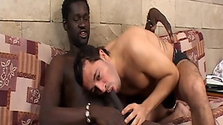 Latino Blacking Out - Latin-Hot
