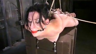Bondage, Hardcore, Bdsm, Compilation, Rough, Rough Sex, Ball Gag