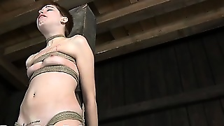 Whipping, Hard Core, Bdsm Whipping, Bdsm Hardcore, Hardcore Bdsm, Hardcore Fetish, Bdsm Beauty, B D Sm