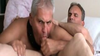 Bareback, Blowjob, Cum In Mouth, Swallow, Gay, Cumshot