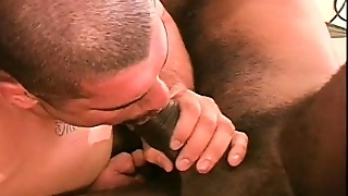 Mega Muscled Interracial Lovers Get Down For Some Hard Anal Slamming