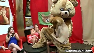 Crashing The Club Dancing Bear Style