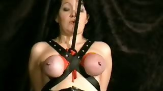 Pussy, Nude, Anal Erotic, Wild Tits, Try Anal Pain, Pussy Amateur, Fucking Amateur, Amateur Sensual