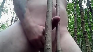 Jerking Off My Wood Betwixt Wood In The Woods