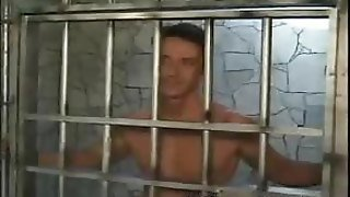 Muscled Cell Mates Cock Sucking