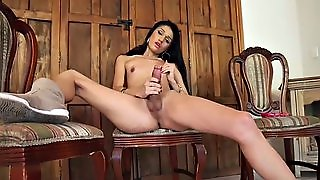 Shemale Amateur Masturbating Solo