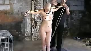 Model, Fetish Slave, Slave Shaved, Shaved Slave, Fetish Model, Erot Ic, Fetishmodel, Fetish Head, Shaved Fetish, Slave Model