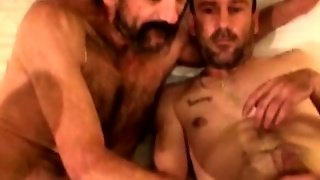 Chef, Gay Blowjob Car, Beauf, Sextoys, Le Sud, Fellation Sale, Bears Fellation, Jouets Gay