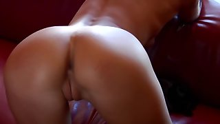 Euro Teen Models Pussy And Ass Solo