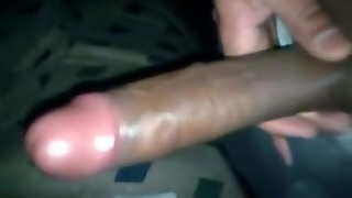 Gay Cock, Gay, Gay Amateur, Gay Latin