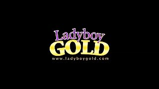 Ladyboygold Model Kita - A Xhamster Exclusive