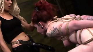 Punished, Redhead Lesbian, Lesbian With Strapon, Femdom Lesbian Strapon, Strap On Blonde, Punished Bdsm, Bdsm Strap On, Fem Dom Lesbian