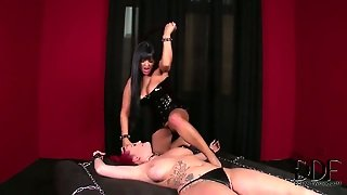 Paige Delight With Big Knockers And Smooth Beaver Takes