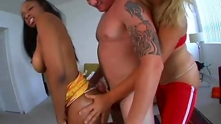 Oiled Up Bitches Getting Nailed