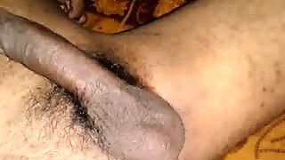 Indian Penis Video