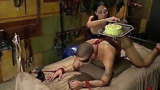 Tranny Tit Cake And Cock