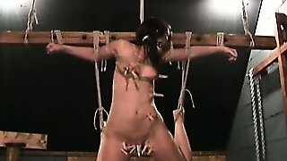 Amateur Bondage, Bdsm Amateur, Bdsm Bondage, Brunette Bondage, Amateur Cute, Bdsm Fetish Bondage, Tied Fetish, Bondagefetish