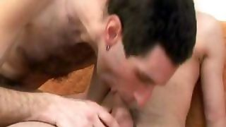 Hairy Gay Bear Mouthing A Dick