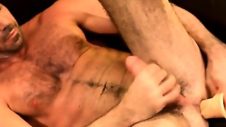 Gay Muscle Bear Jerks And Cums