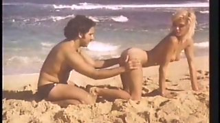 Ginger Lynn Fucking On Beach By Ron Jeremy