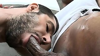 Succulent Oral-Job Job For Studs