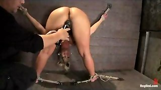 Anal Toy, Fetish, Bondage Anal, Whipping Slave, Finger In The Ass, Clit Bdsm, Bound To Be Fucked, Bdsm Fetish Slave, Finger Blonde, Fingering Clit