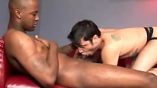 Interracial Blowjobs And Ass Licking