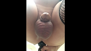 Gay, Anal, Solo Male, Hd