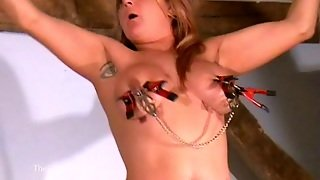 Busty Amateur Bdsm Of Crazy Painslut Gina In Harsh Tit Pain