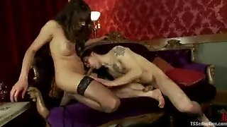 Busty Tranny In Stockings Fucks Guy Anally And In Mouth