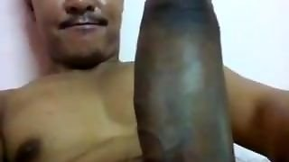 Asian Gaybig Cock - Sex