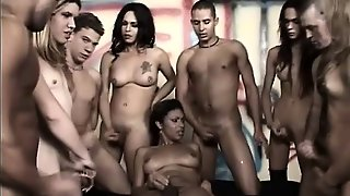 Horny Trannies Give Blowjobs And Engage In Anal Sex In A Wild Transsexual Orgy