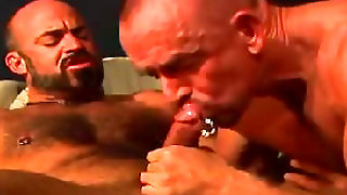 Scorching Studs Pounding In Th Ebutt
