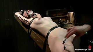 Pale, Head, Session, Intense, Bondage Hd, Bdsm Bondage, B D Sm, Fetishbdsm, Skin Bdsm, Bdsmfetish