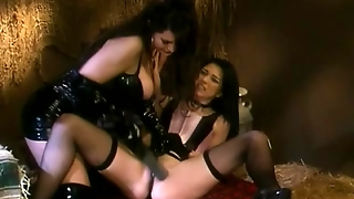 Lingerie, Latex And Spanking
