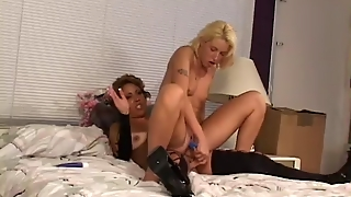 Hardcore, Old Young, Lesbians, Milfs, Sex Toys
