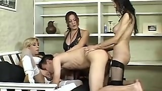 Tgirl Anal, Shemale Lingerie, Shemale, Shemale Blowjob, Shemale Group Sex