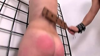 Anal, Funny, Blowjobs, Hd